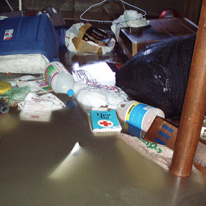 Clean up Flooded Basement