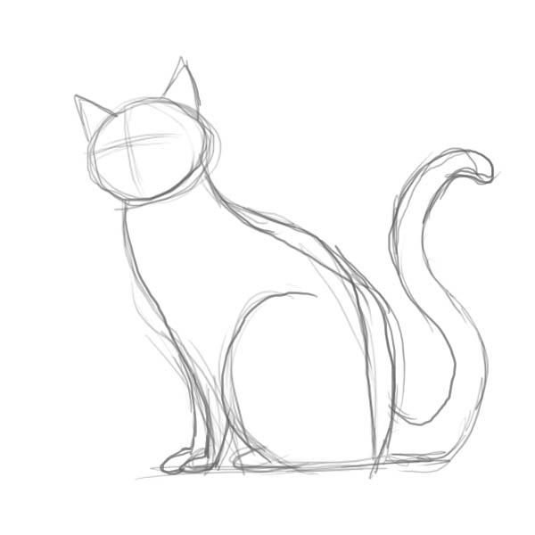 Животные картинки рисовать поэтапно карандашом для начинающих 12