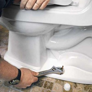 Replace Toilet Flange