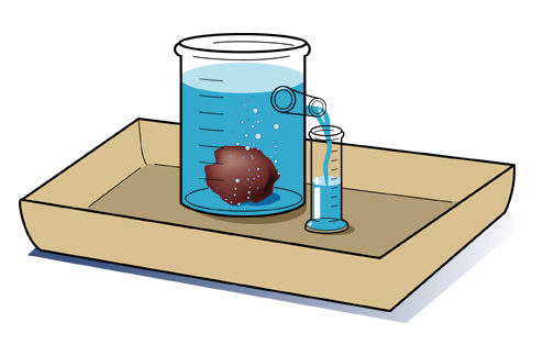 How to Calculate the Density of an Object