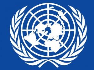 UN language