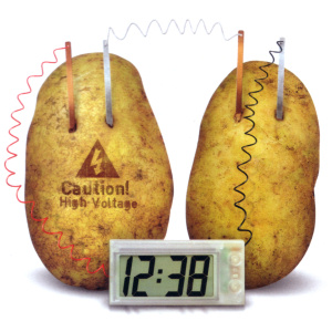 methodology potato as a battery The potato battery is a type of electrochemical battery, or cell certain metals (zinc in the demonstration below) experience a chemical reaction with the acids inside of the potato this.