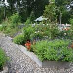 Beautiful-Landscape-Vegetable-Home-Garden