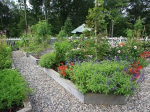 Beautiful-Landscape-Vegetable-Home-Garden