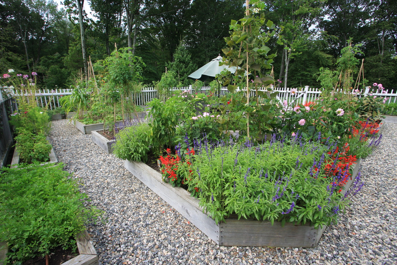 Steps To Maintain A Garden